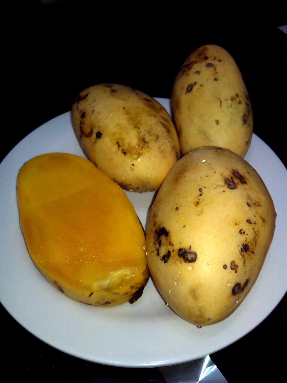 Ripe Mangoes for Mango Float